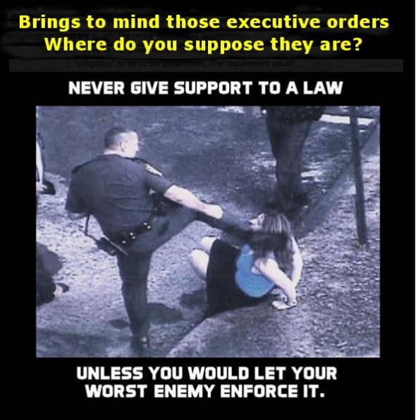 support to a law