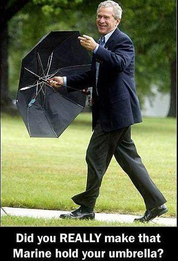 bushumbrella