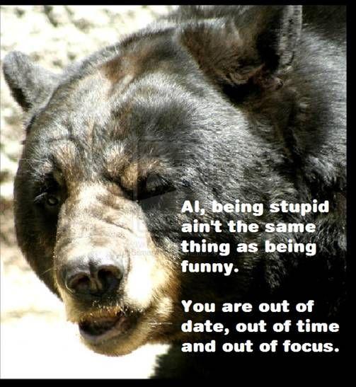 stupid bear