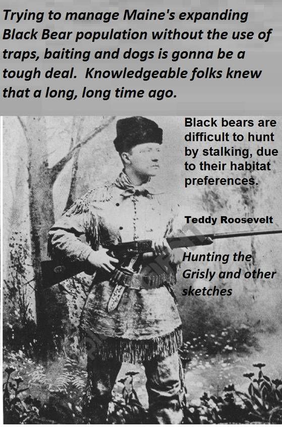 teddyrooseveltblackbears