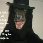 HSUS Trolling for Idiots With New Anti Bear Referendum