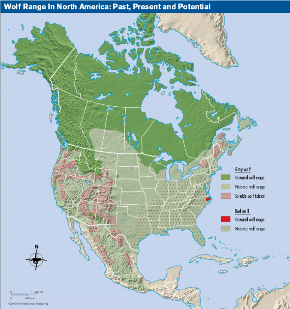 dowwolfplanmap