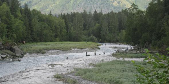 fishingbirdcreek