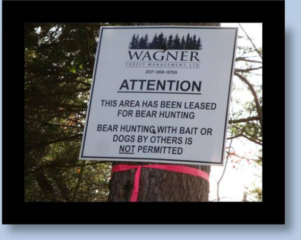 Is Maine's Hunting Future About Leased Land?