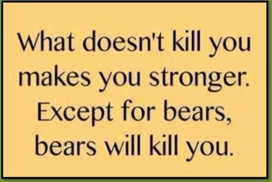 BearStronger