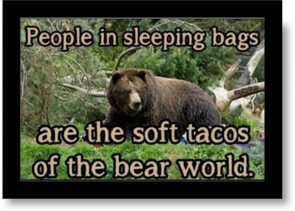BearTacos