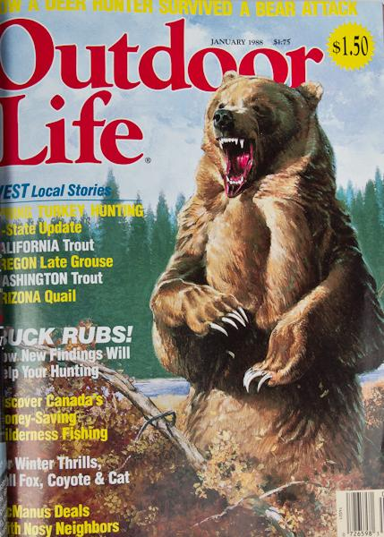 OutdoorLifeBearAttacks