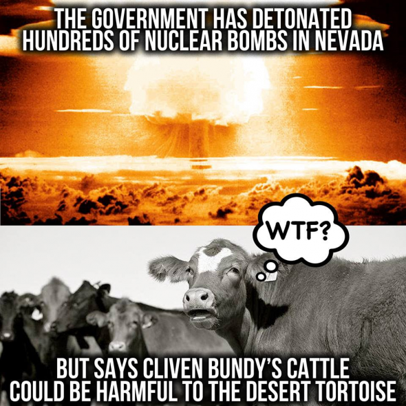 NuclearCows