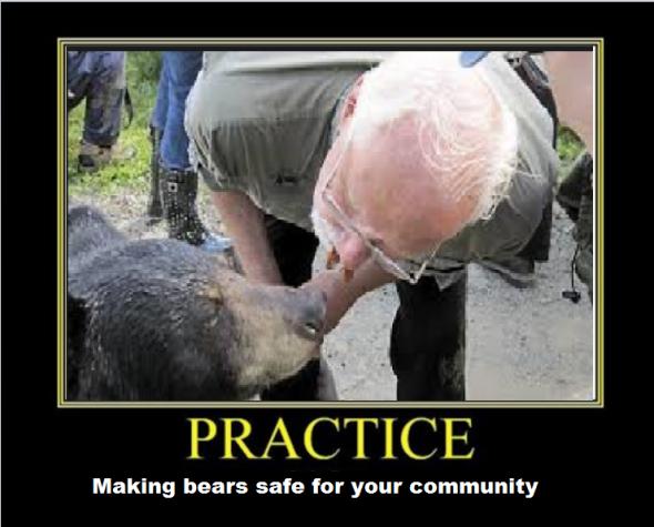 BearPractice