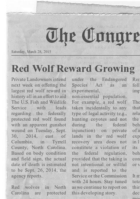 RedWolfNews