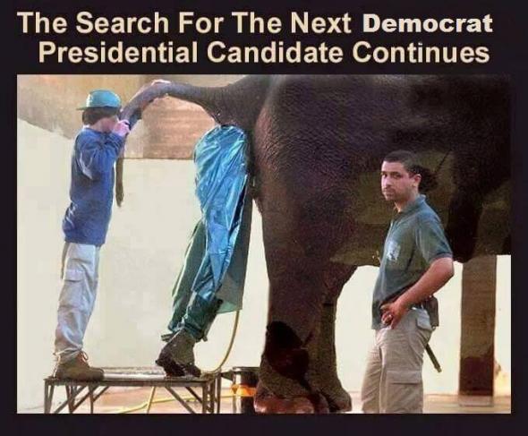 SeekingDemocrat