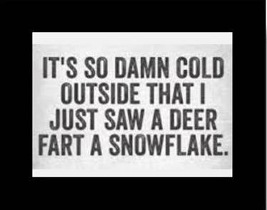 SnowflakeFart