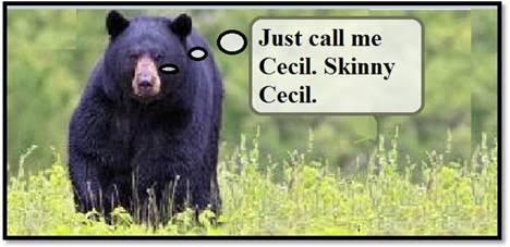 CallMeCecil