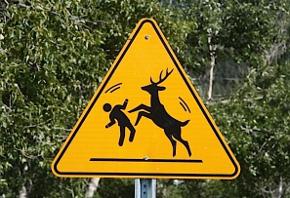 DeerAttackSign