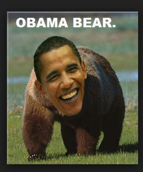 ObamaBear