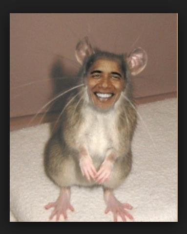 ObamaMouse