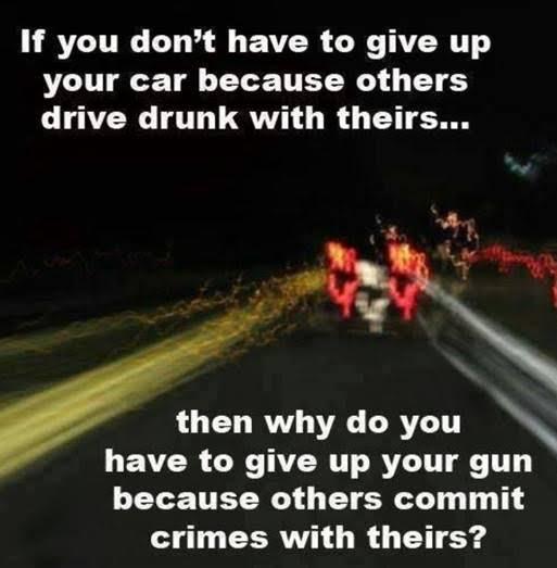DrivingandGuns