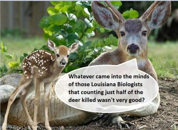 LouisianaDeerRegistering