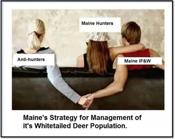 MDIFWDeerManagementStrategy