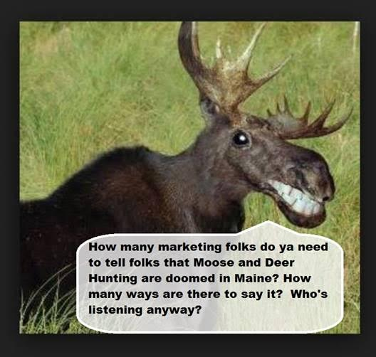 MarketingMoose