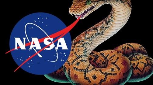 nasa snake