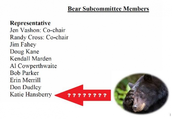 BearSubcommittee