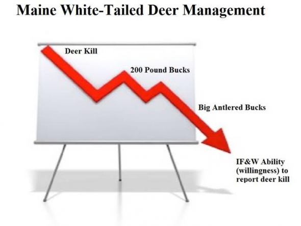 DeerManagement