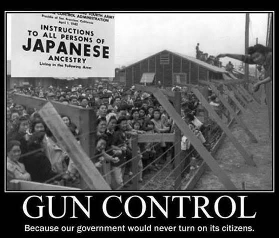 GunControlJapanese