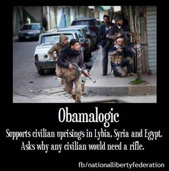 ObamaLogic