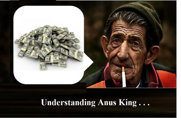 UnderstandingAngusKing
