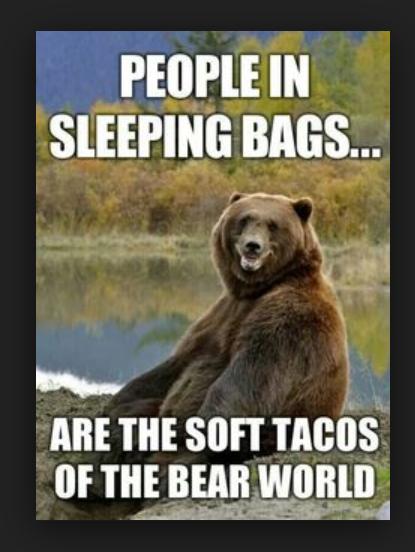BearSoftTacos