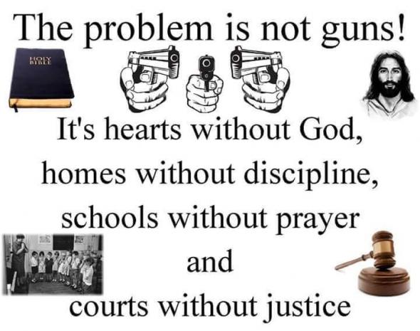 GunsNotProblem
