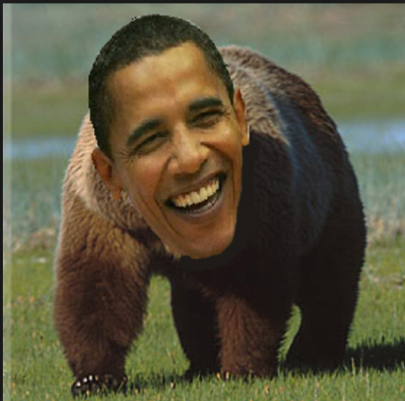 BrownPhasedObama