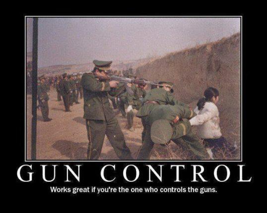 CONTROL+GUNS+WINS