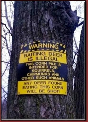 BaitingDeerIllegal