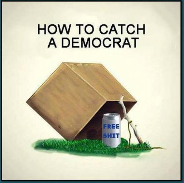 catchdemocrat