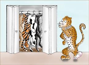 LeopardChangingSpots