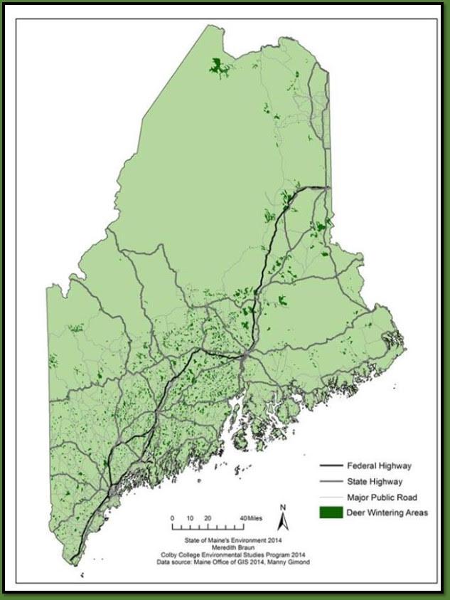 maine deer population map Maine Map Deer Wintering Areas maine deer population map